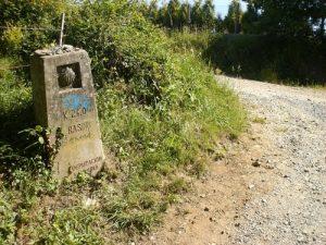 camino-francés-peregrinos-ruta-xacobea