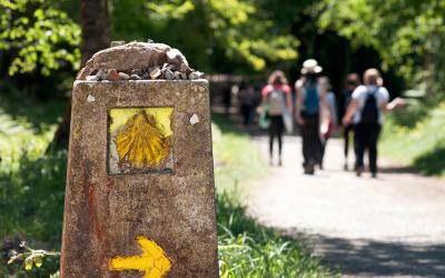 ¿Te estás planteando convertirte en peregrino? Cuáles son las mejores rutas de iniciación en el Camino