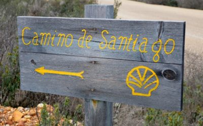The best quotes on the Camino de Santiago