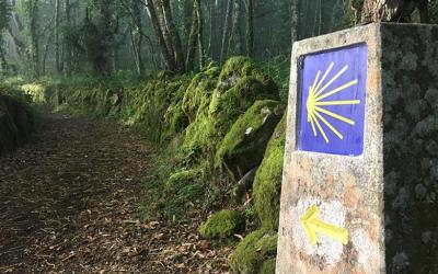 ¿Cuál es la mejor ruta Jacobea para hacer esta Semana Santa?